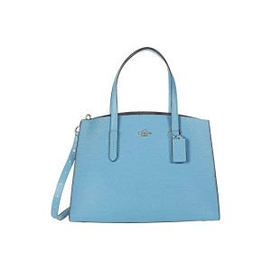 Polished Pebble Leather Charlie Carryall