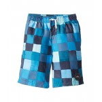 Resin Check 19 Volley Shorts (Big Kids)