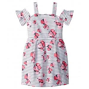 Sleeveless Floral Dress (Toddler/Little Kids/Big Kids) Floral Stripe