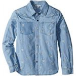 Melvil Skull Embroidered Chambray Shirt (Toddler/Little Kids/Big Kids)