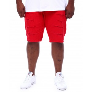 distressed denim shorts (b&t)