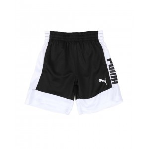 rebel bold pack performance shorts (4-7)