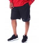 mesh shorts (b&t)