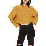 Punk Roll Neck Crop Sweater