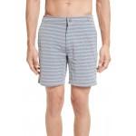 Calder Stripe Board Shorts
