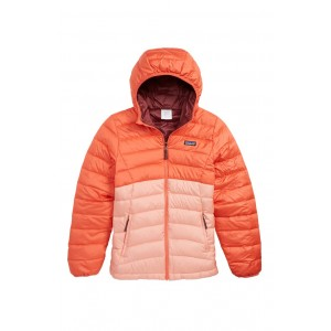 Reversible Water Repellent 600 Fill Power Down Hooded Jacket