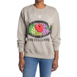 Fruit of the Loom Graphic Pullover
