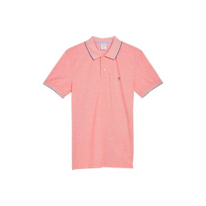 Yarn Dyed Pique Tipped Polo