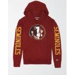 Tailgate Men's FSU Seminoles Fleece Hoodie