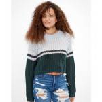 AE Cropped Color Block Crew Neck Sweater