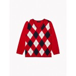 Essential Curve Argyle Stripe Sweater