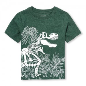 Baby And Toddler Boys Short Sleeve Dino Fossil Graphic Tee