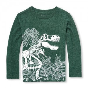 Baby And Toddler Boys Long Sleeve Dino Fossil Graphic Tee