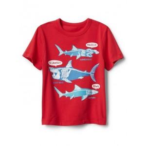 Graphic Short Sleeve T-Shirt