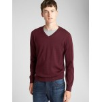 V-Neck Pullover Sweater in Merino Wool