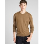 Crewneck Pullover Sweater in Pure Merino Wool