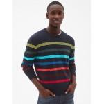 Crazy Stripe Crewneck Pullover Sweater