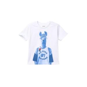 Llama T-Shirt (Toddler, Little Boys, & Big Boys)