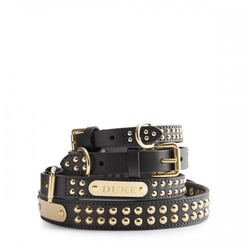 폴로 Knox Studded Dog Collar