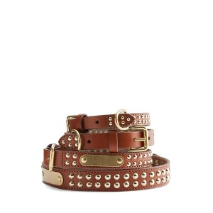 Knox Studded Dog Collar