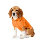 Big Pony Mesh Dog Polo Shirt
