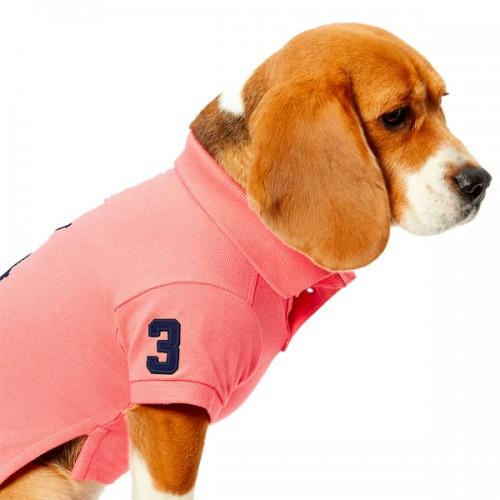 폴로 Cotton Piqué Dog Polo Shirt