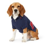 Piqu&eacute Patch Dog Polo Shirt