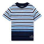 Ombre Striped Cotton Tee