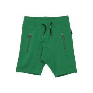 MOLO Shorts  Bermuda