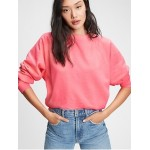 Vintage Soft Raglan Crewneck Sweatshirt